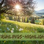 5 Frühlings-Highlights, auf die wir uns freuen