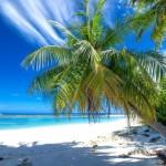 Die beste Reisezeit für den Traumurlaub auf den Malediven