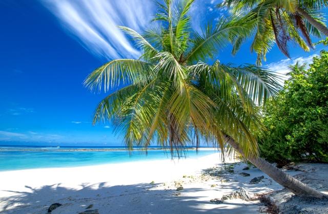 Beste Reisezeit Für Den Traumurlaub Auf Den Malediven