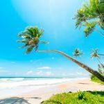 TOP 3 Reiseziele für Sonne & Meer im Winter
