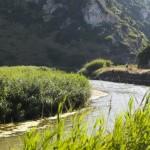 Aktiv erholen an Portugals Küste