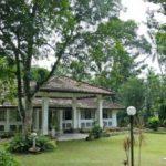 Ayurvedisch kochen lernen mit eigenen Bio-Produkten in der Plantation Villa