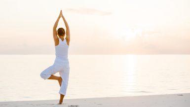 Der Yogabaum