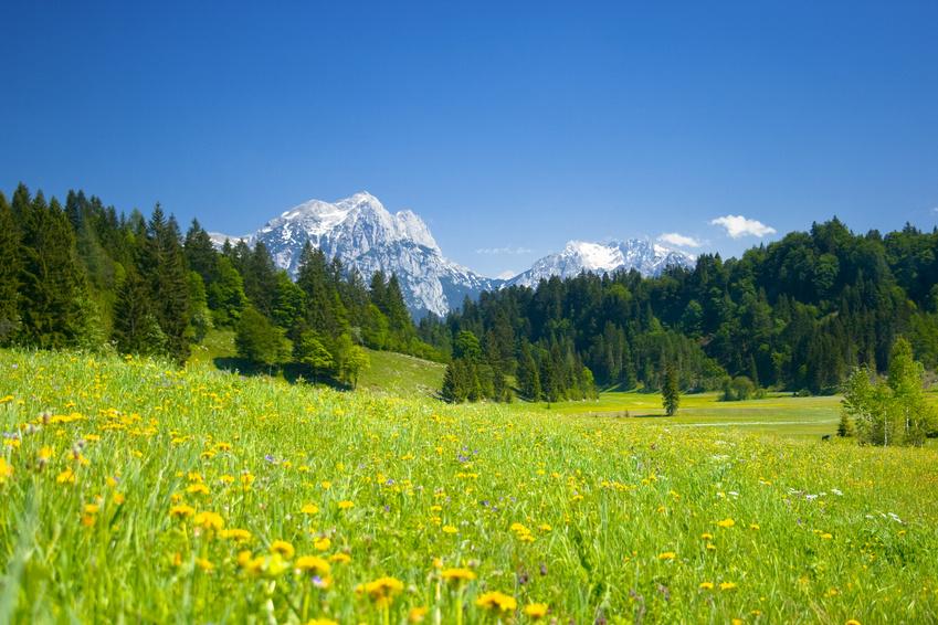 Traumhafte Ausblicke in Österreich