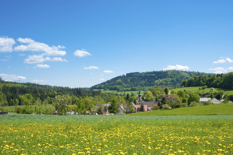 Der Rhein-Neckar-Kreis ist eine der wärmsten Regionen Deutschlands