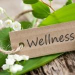 Mehr als nur Massagen – Die 5 kuriosesten Wellnesstrends